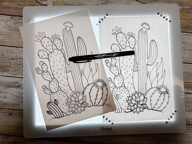 Trace cactus image from Free Printable Creatively Beth #creativelybeth #watercolor #freeprintable #freedownload #cactus #succulents